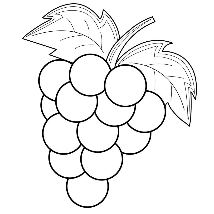 Раскраска Виноград — Край друзей
