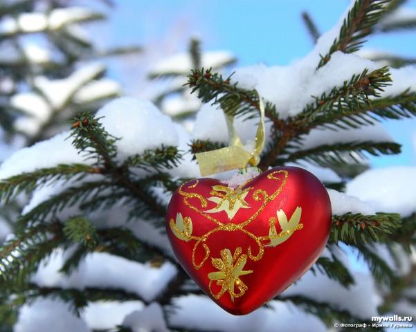 Новый год с любовью в картинках