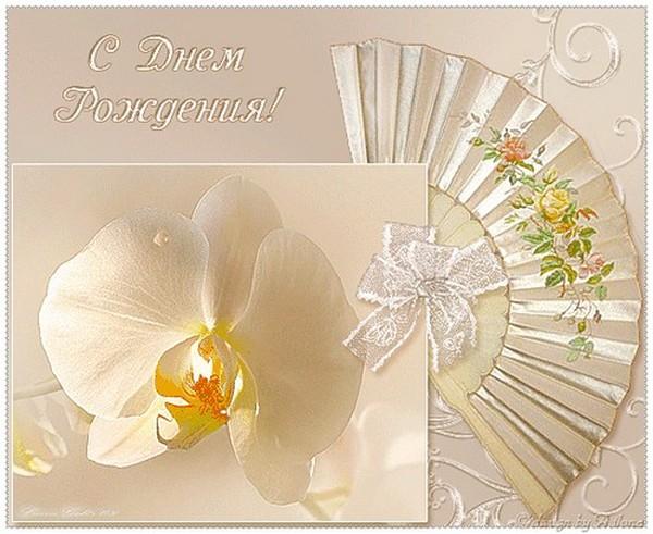 Поздравительные открытки с днем рождения орхидеи